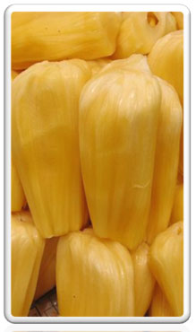 JAckfruit Product